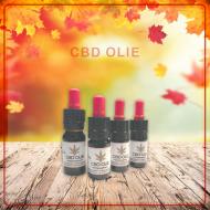 CBD Olie